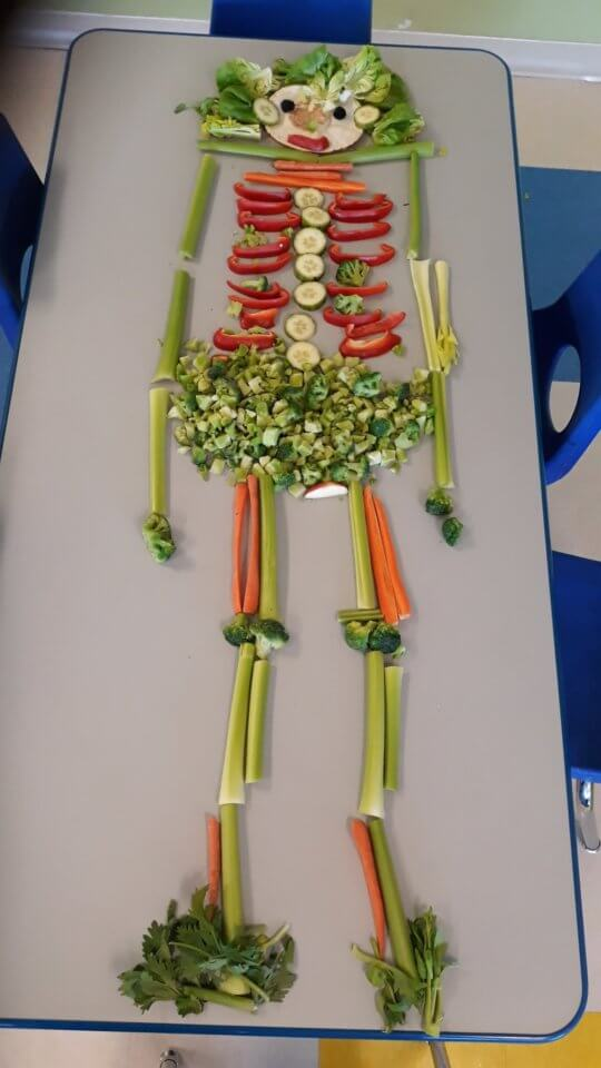 Skeleton made out of vegetables