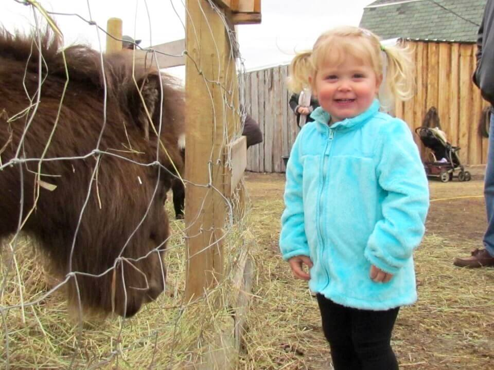 toddler with horse